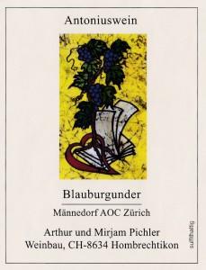 Antoniuswein-Blauburgunder-Männedorf
