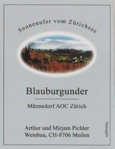 Blauburgunder Männedorf